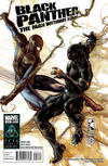 Cover for Black Panther: The Man Without Fear (Marvel, 2011 series) #516 [Regular cover]