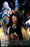Cover for Wolverine (Marvel, 2010 series) #4 [Djurdjevic Cover]