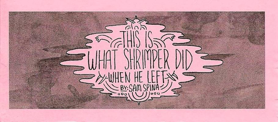 Cover for This Is What Shrimper Did When He Left (Spinadoodle, 2010 series) #[nn]