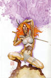 Cover Thumbnail for Red Sonja (2005 series) #26 [David Mack Virgin Incentive Variant]