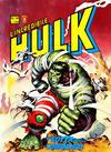 Cover for L'Incredibile Hulk (Editoriale Corno, 1980 series) #14