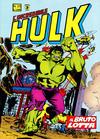 Cover for L'Incredibile Hulk (Editoriale Corno, 1980 series) #25
