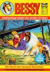 Cover for Bessy (Bastei Verlag, 1976 series) #22