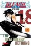 Cover for Bleach (Ediciones Glénat, 2007 series) #18