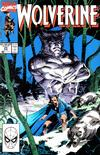 Cover for Wolverine (Marvel, 1988 series) #25 [Direct Edition]