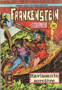 Cover Thumbnail for Frankenstein (Arédit-Artima, 1975 series) #2