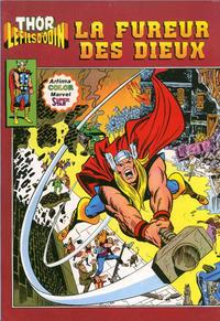 Cover Thumbnail for Thor le fils d'Odin (Arédit-Artima, 1979 series) #10