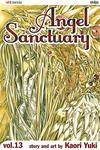 Cover for Angel Sanctuary (Viz, 2004 series) #13
