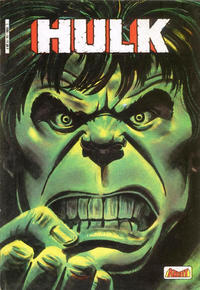 Cover Thumbnail for Hulk (Arédit-Artima, 1983 series) #14