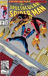 Cover Thumbnail for The Spectacular Spider-Man (Marvel, 1976 series) #193