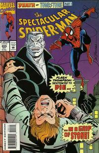 Cover Thumbnail for The Spectacular Spider-Man (Marvel, 1976 series) #205