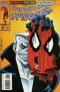 Cover Thumbnail for The Spectacular Spider-Man (Marvel, 1976 series) #206