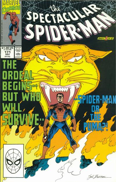 Cover for The Spectacular Spider-Man (Marvel, 1976 series) #171