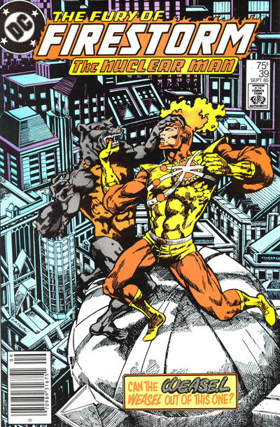 Cover for The Fury of Firestorm (DC, 1982 series) #39 [Newsstand]