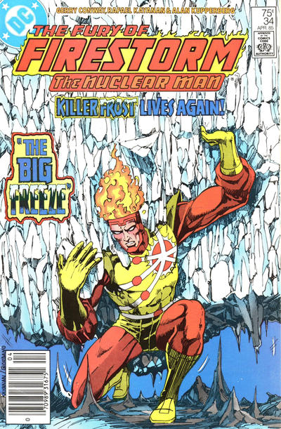 Cover for The Fury of Firestorm (DC, 1982 series) #34 [Newsstand]