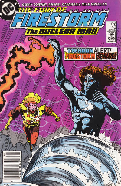 Cover for The Fury of Firestorm (DC, 1982 series) #43 [Direct Sales]