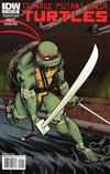 Cover for Teenage Mutant Ninja Turtles (IDW, 2011 series) #1 [Cover D - Dan Duncan Connecting Variant]