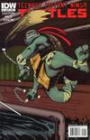 Cover for Teenage Mutant Ninja Turtles (IDW, 2011 series) #1 [Cover C - Dan Duncan Connecting Variant]