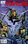 Cover for Teenage Mutant Ninja Turtles (IDW, 2011 series) #1 [Cover RI-A - Kevin Eastman Variant]
