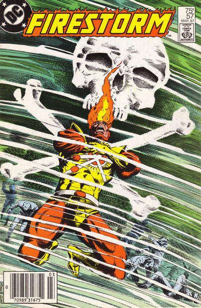 Cover for The Fury of Firestorm (DC, 1982 series) #57 [Newsstand]