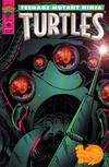 Cover for Teenage Mutant Ninja Turtles (Mirage, 1993 series) #6
