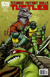 Cover for Teenage Mutant Ninja Turtles (IDW, 2011 series) #2 [Cover A - Dan Duncan]