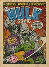 Cover for Hulk Comic (Marvel UK, 1979 series) #21