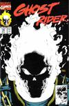 Cover for Ghost Rider (Marvel, 1990 series) #15 [Direct]