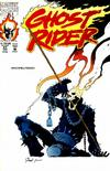 Cover for Ghost Rider (Marvel, 1990 series) #21 [Direct]