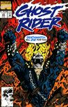 Cover for Ghost Rider (Marvel, 1990 series) #23 [Direct]