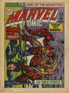 Cover for Marvel Comic (Marvel UK, 1979 series) #343