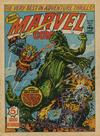 Cover for Marvel Comic (Marvel UK, 1979 series) #349