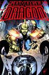 Cover for Savage Dragon (Image, 1993 series) #176