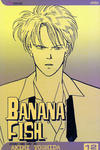 Cover for Banana Fish (Viz, 2004 series) #12