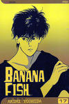 Cover for Banana Fish (Viz, 2004 series) #17
