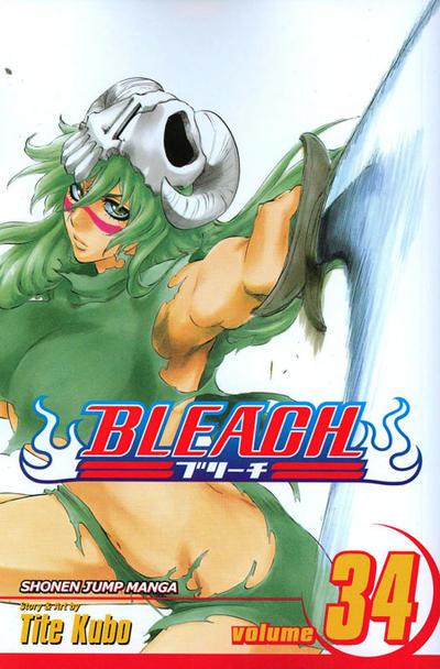 Cover for Bleach (Viz, 2004 series) #34