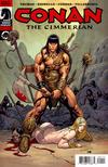 Cover for Conan the Cimmerian (Dark Horse, 2008 series) #1 [51] [Frank Cho cover]