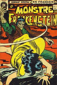 Cover Thumbnail for Le Monstre de Frankenstein (Editions Héritage, 1973 series) #7