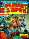 Cover for Planet of the Apes (Marvel UK, 1974 series) #11