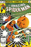 Cover Thumbnail for The Amazing Spider-Man (1963 series) #244 [Direct]