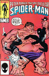 Cover Thumbnail for The Spectacular Spider-Man (1976 series) #91 [direct]