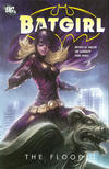 Cover for Batgirl: The Flood (DC, 2011 series)