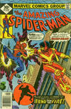 Cover Thumbnail for The Amazing Spider-Man (1963 series) #172 [Whitman Edition]