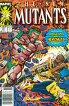 Cover Thumbnail for The New Mutants (1983 series) #81 [Newsstand Edition]