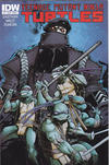 Cover for Teenage Mutant Ninja Turtles (IDW, 2011 series) #7 [Cover A - Dan Duncan]