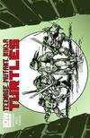Cover for Teenage Mutant Ninja Turtles (IDW, 2011 series) #4 [Cover RE - Jetpack]