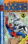 Cover for Il Settimanale de L'Uomo Ragno (Editoriale Corno, 1981 series) #10