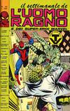Cover for Il Settimanale de L'Uomo Ragno (Editoriale Corno, 1981 series) #29