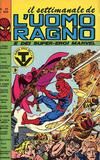 Cover for Il Settimanale de L'Uomo Ragno (Editoriale Corno, 1981 series) #31