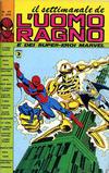 Cover for Il Settimanale de L'Uomo Ragno (Editoriale Corno, 1981 series) #41